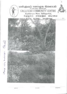 Land cleanig Photo 1